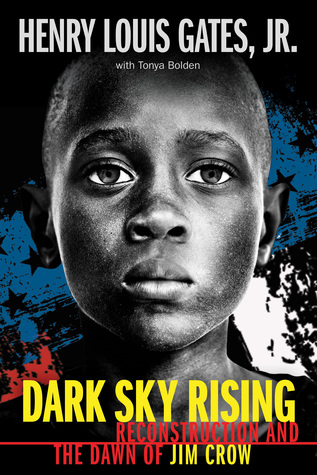 dark sky rising book cover