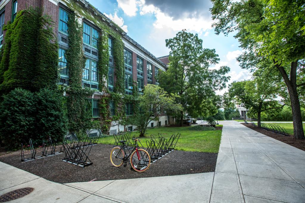 College campus with a bike rack and ivy